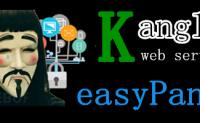对Kangle easyPanel安全性、漏洞解决和使用看法