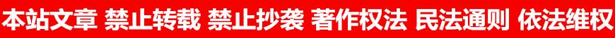 本站文章 禁止转载 禁止抄袭 著作权法 民法通则 依法维权