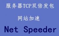 国外网站加速:利用Net Speeder进行双倍TCP发包